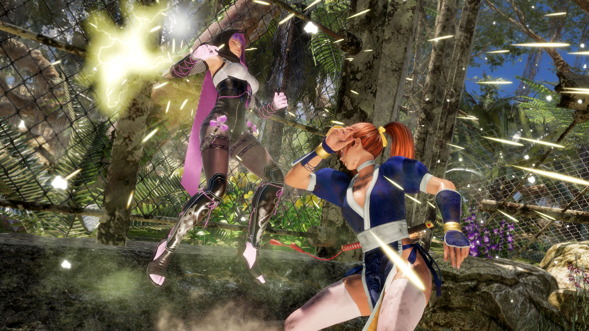 Dead Or Alive 6 Stages